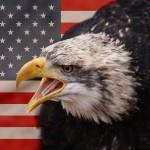Visa J-1 eagle